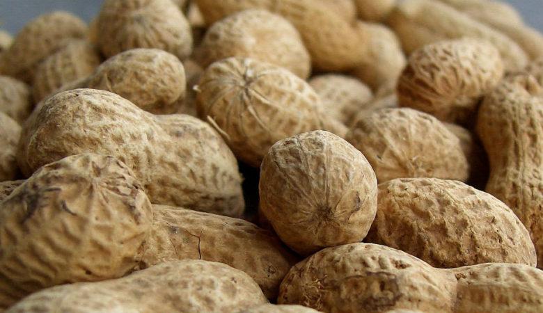 Os cacahuetes ese aperitivo de legumes tan típico como tapa