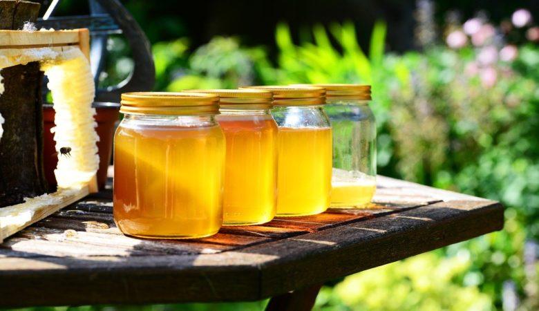 O mel de eucaliptos galegos pode ser unha forma de sacar partido a esta árbore