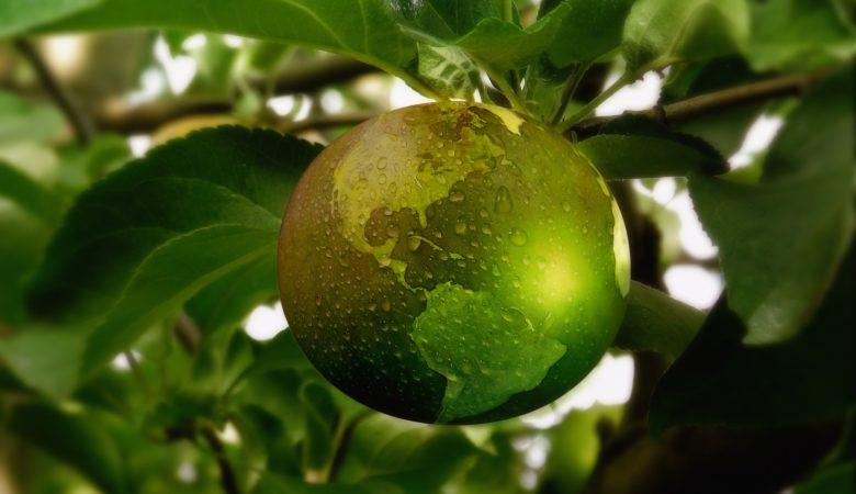 A sustentabilidade e a economía circular forman parte dos desafíos que se marca o Clúster Alimentario de Galicia para este ciclo