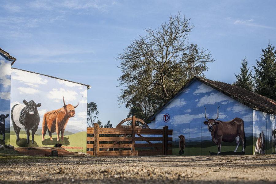 A entrada da granxa de Fisterra Bovine World