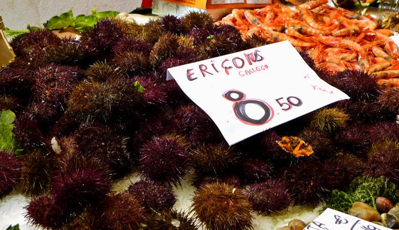 Ourizos de mar á venda no Mercat de la Boquería en Barcelona