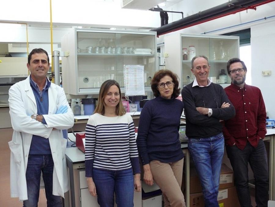 Equipo da Universidade de Córdoba responsable do estudo e dirixido por Juan Gil Lixeiro.