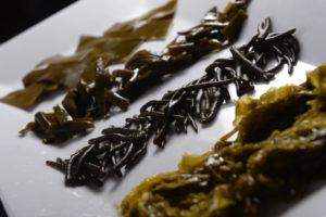 Imaxe de algas empratadas. Foto: Miguel Riopa