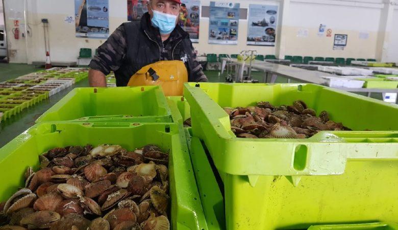 Elixir produtos de proximidade axuda a reducir a pegada de carbono dos alimentos. Foto: Pesca de Rías.