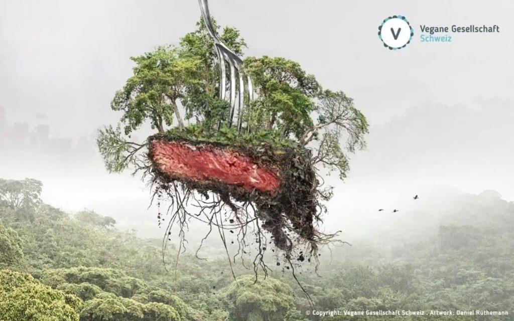 Tenreira e deforestación