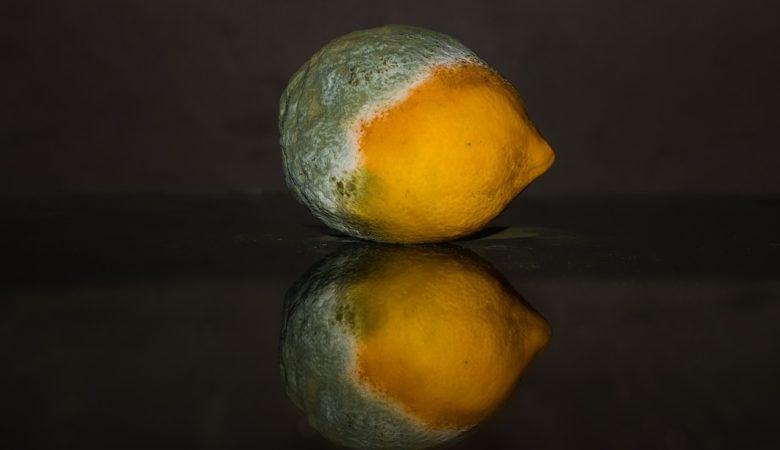 As micotoxinas poden aparecer na froita, os cereais e os froitos secos. Foto: Pixabay.
