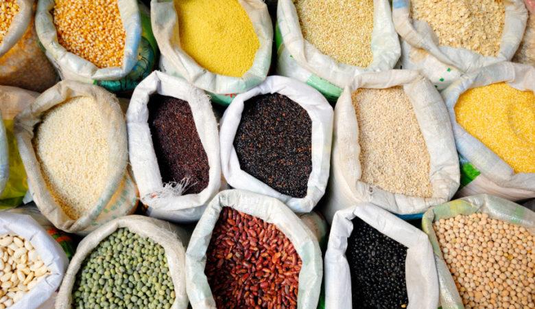 O proxecto PROTEINLEG procurará unha produción sostible de leguminosas ricas en proteínas para o consumo humano e da gandería, como alternativa á dependencia da soia.
